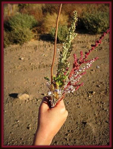 Ash Canyon Bouquet