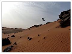 Jumping in The Sahara