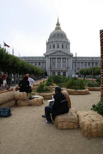 Urban gardening outside City Hall, San Francisco