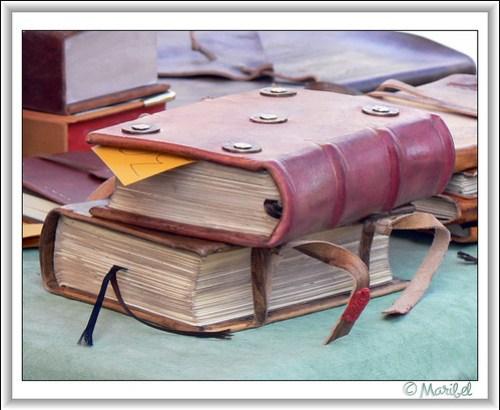 Libros de cuero