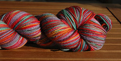 Cherry Tree Hill in the Mardi Gras colorway from <a href=