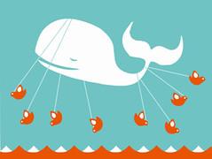 prevail-whale