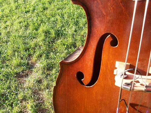 bluegrass cello