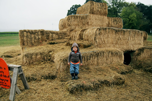 pumpkin patch 2008 029 copy by you.