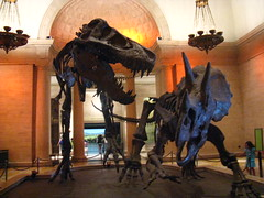 Dinosaurs at the Entrance