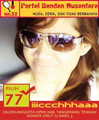 Partai Dandan Nusantara
