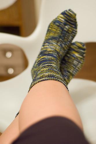 Day 51: brand spankin' new socks (by bookgrl)