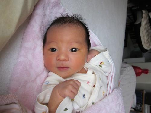 Aoi was born
