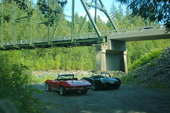 Corvette and Cobra