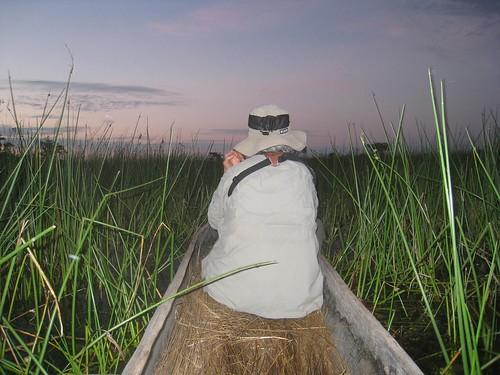 Sunrise mokoro ride - Okavango Delta, Botswana