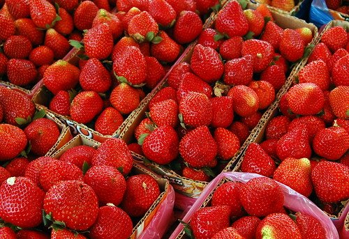 Strawberries (La Trinidad, Benguet) by ~MVI~.