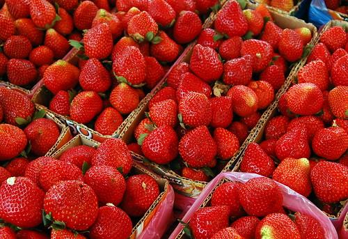 Strawberries (La Trinidad, Benguet) by ~MVI~.
