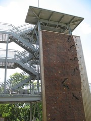 urban ecology climbing wall