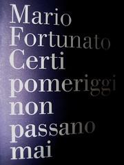Mario Fortunato, Certi pomeriggi non passano mai; nottetempo 2009; progetto grafico: Studio Cerri Associati: cop. (part.)