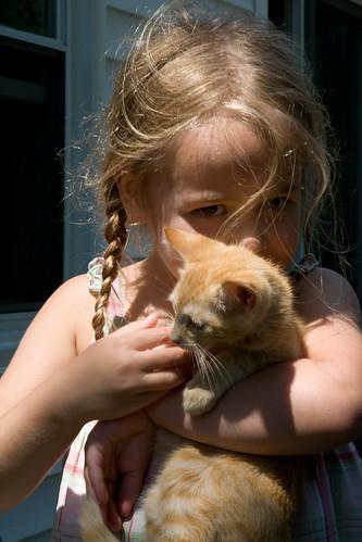 """""""Her"""" Kitten"""