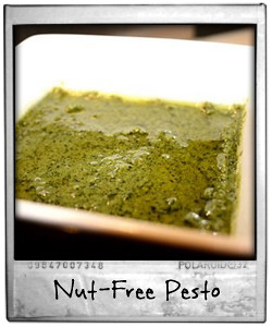 Nut Free Pesto