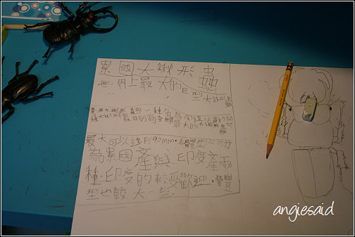 b-20080807_111742.jpg
