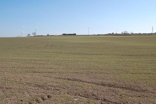 Campos y más campos