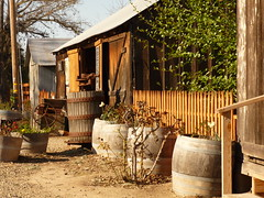 Foxen Winery, Santa Ynez valley