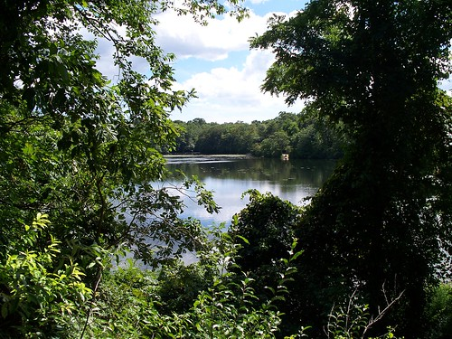 Stump Pond - As viewed from Stairs to Grist Mill