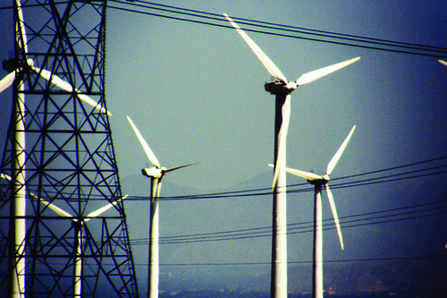 Windmills, Marissa Bergmann