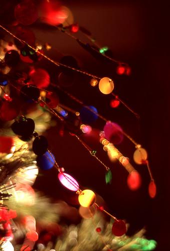 Ornament. (Fuji Astia 100F. Nikon F100. Epson V500.)