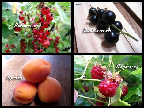 Jammy fruits!