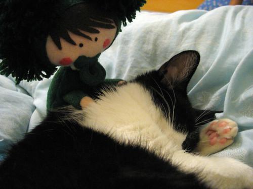 Guto fazendo naninha na Suri, gatinha da Julia Cabral (divulgação/Julia Cabral)