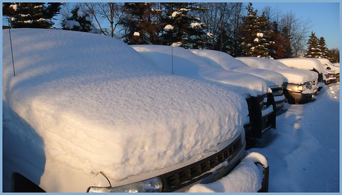 Snow covered government fleet, Midtown Anchorage parking lot.