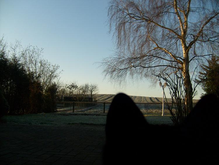 Moritz Day # 297 / 365 26. Dezember 2008