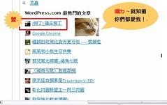 貓王柳丁得第一