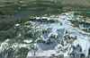 Mt. Seymour Summit Ridge - Google Earth