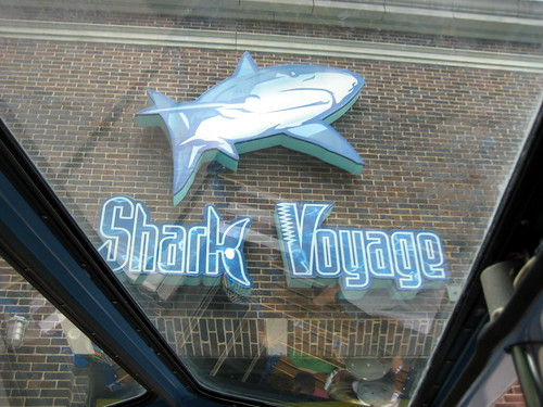 Entering the Shark Voyage tunnel.