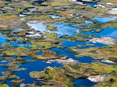 Die kleinen Gras-Inselchen im Inneren des Kraters