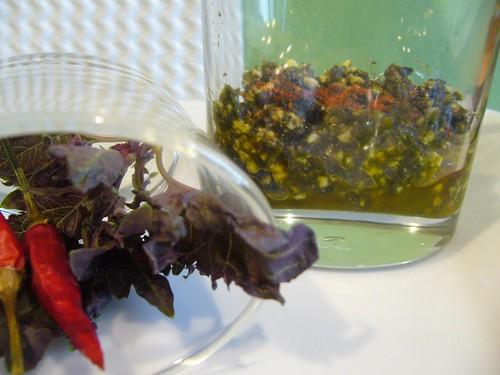 Basilico rosso e Pesto