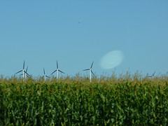Buffalo Ridge windmills