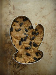 mitten-shaped bird seed cakes