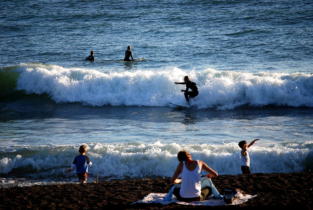 Surfer Desktop