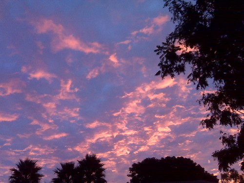 Christmas Eve Sunrise - Sky-Blue Pink