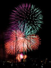 Auckland Anniversary Fireworks 2009