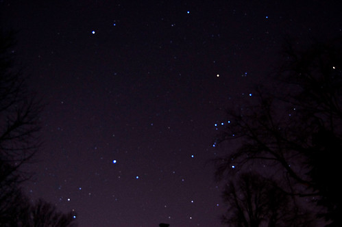 night sky looking towards Orion
