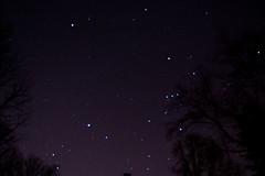 night sky looking towards Orion