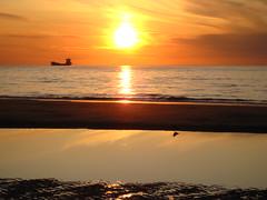 Sunset Scheveningen: ship & bird