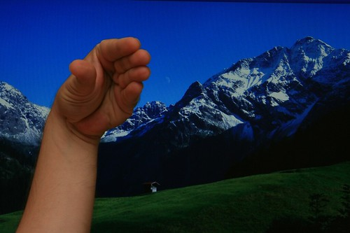 Buchhilde liebt die Berge