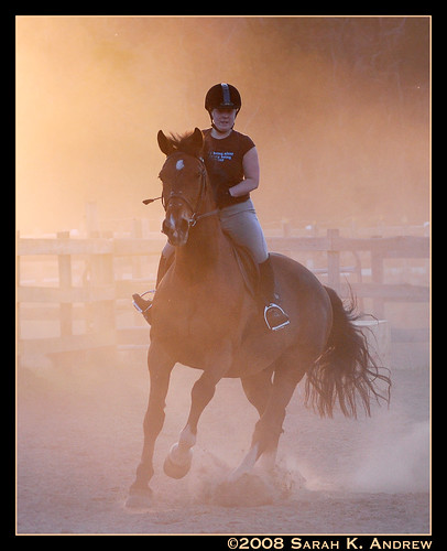 A Canter at Sunset