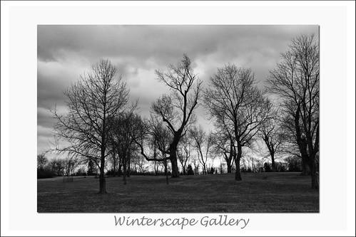 Wintergallery1