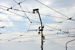 trolley lines