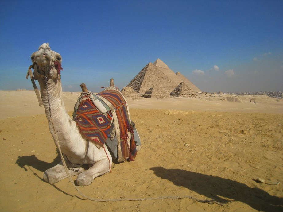 Exploring the Great Pyramids of Giza by camel