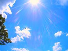 Bright, Bright, Sunshiny Day