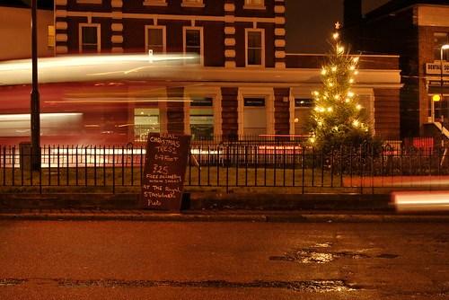 Royal Standard Christmas tree 3